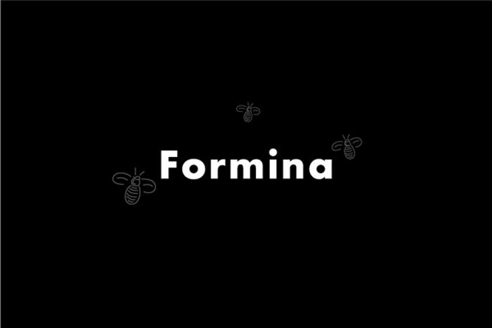 08 29 13 formina 2