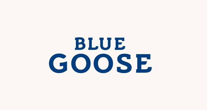 09 06 13 bluegoose 3