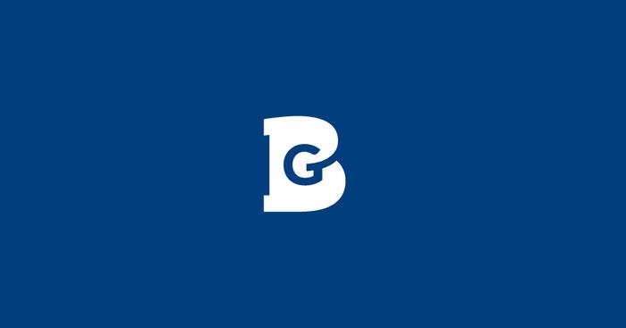 09 06 13 bluegoose 2