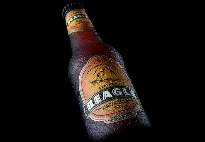 9 24 12 beagle4