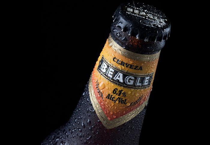 9 24 12 beagle2