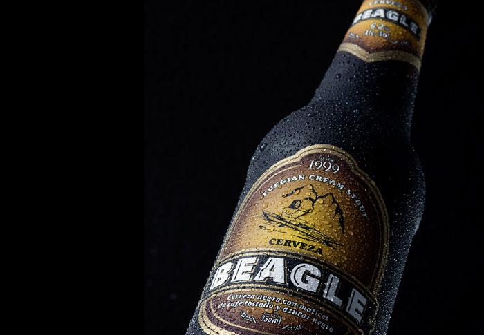 9 24 12 beagle3