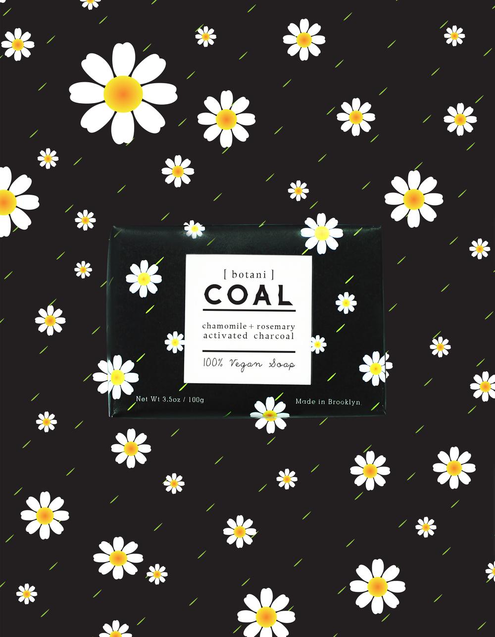 _COAL_4B.jpg