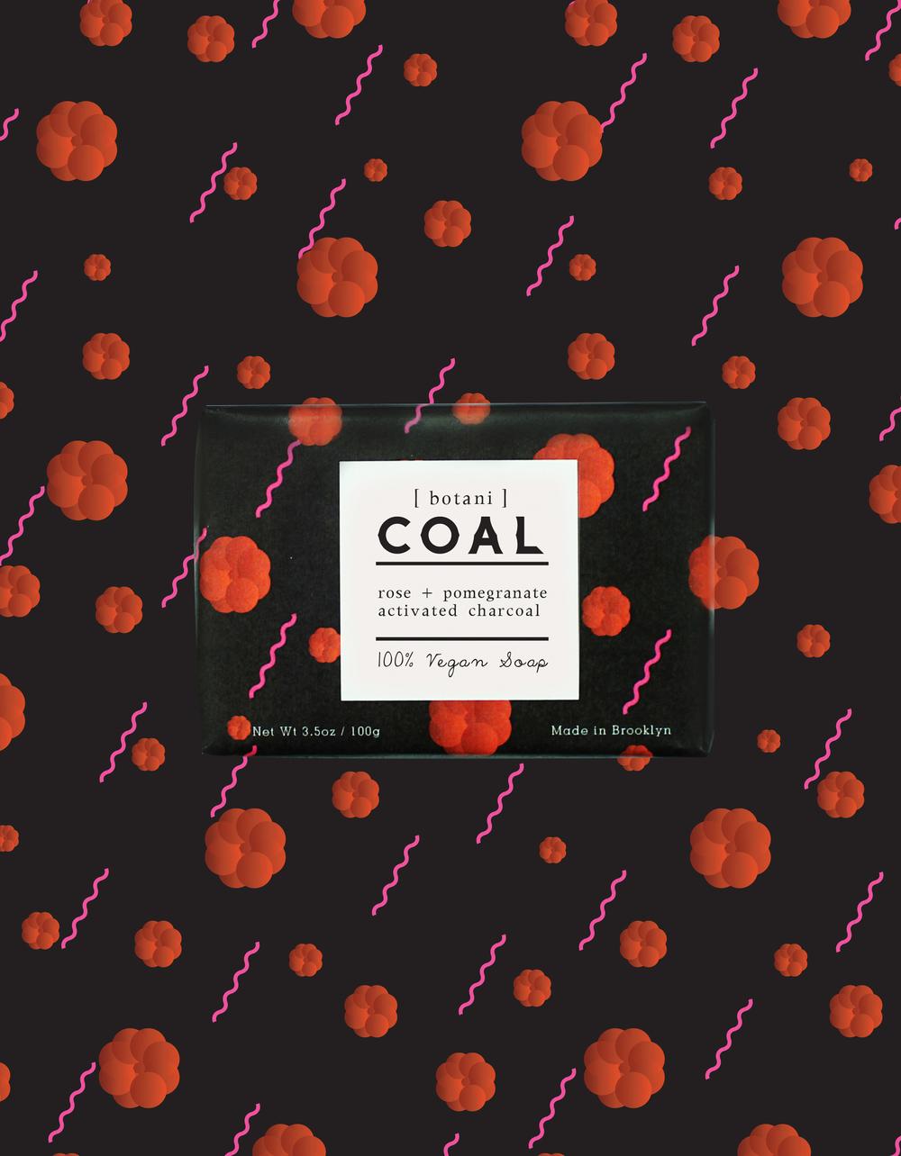 _COAL_5B.jpg