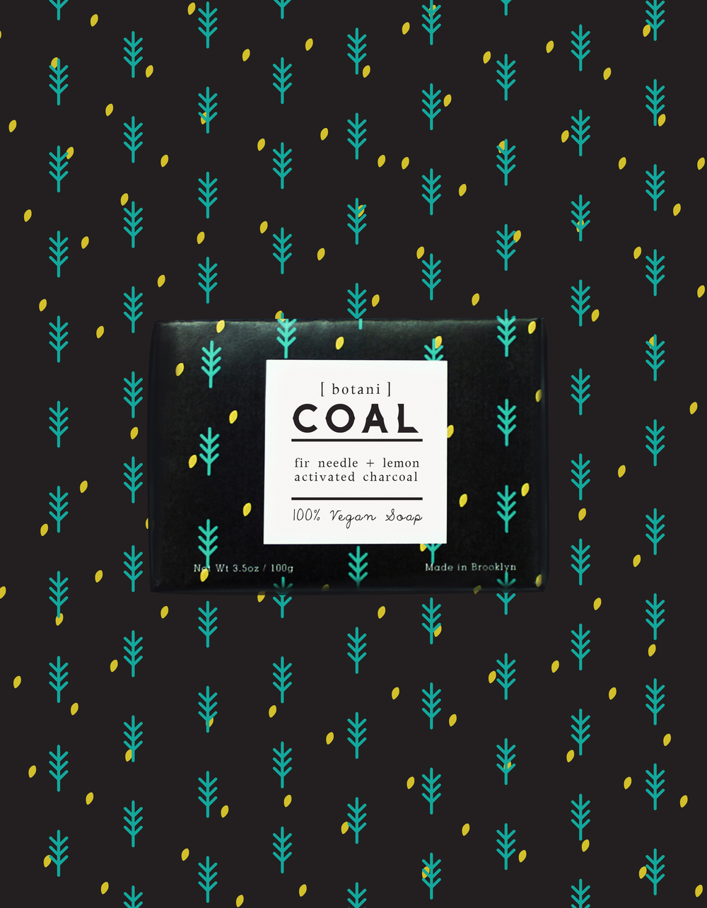 _COAL_1B.jpg