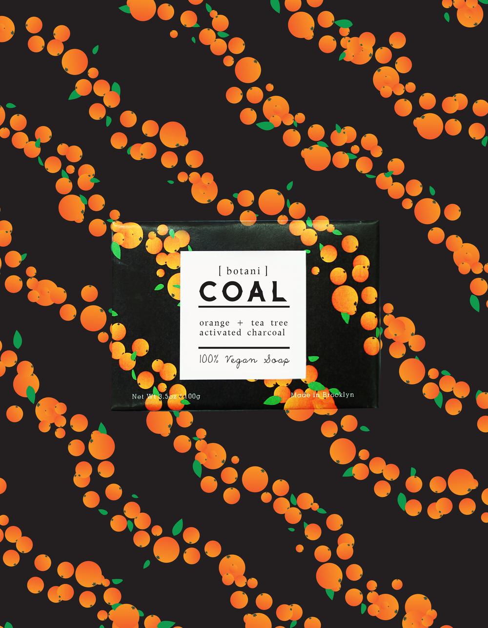 _COAL_2B.jpg