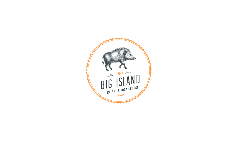 bigisland_logo@2x.png