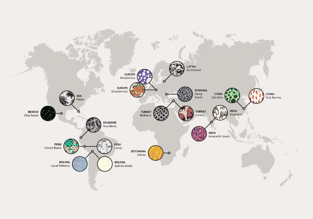 TheBeginnings-Pattern-map.jpg