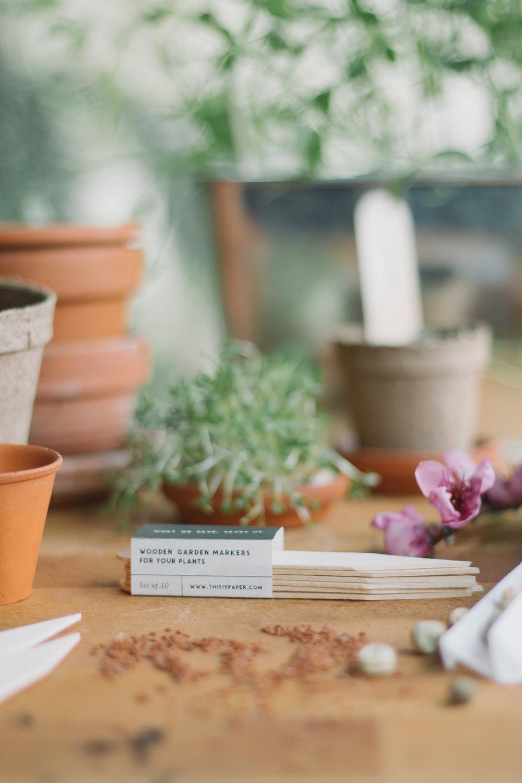 Thisispaper_Gardening_8.jpg