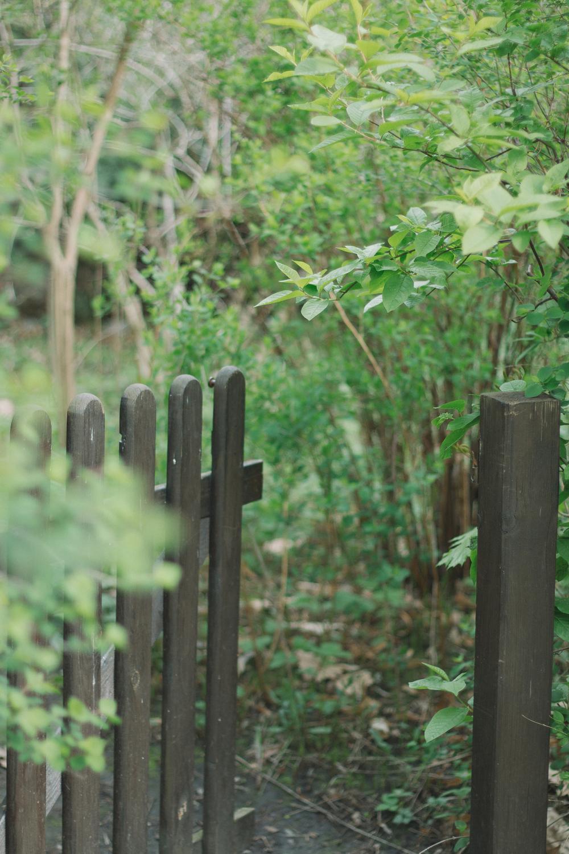 Thisispaper_Gardening_22.jpg