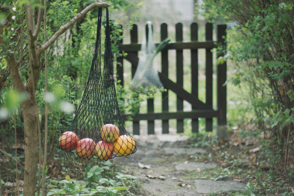 Thisispaper_Gardening_38.jpg