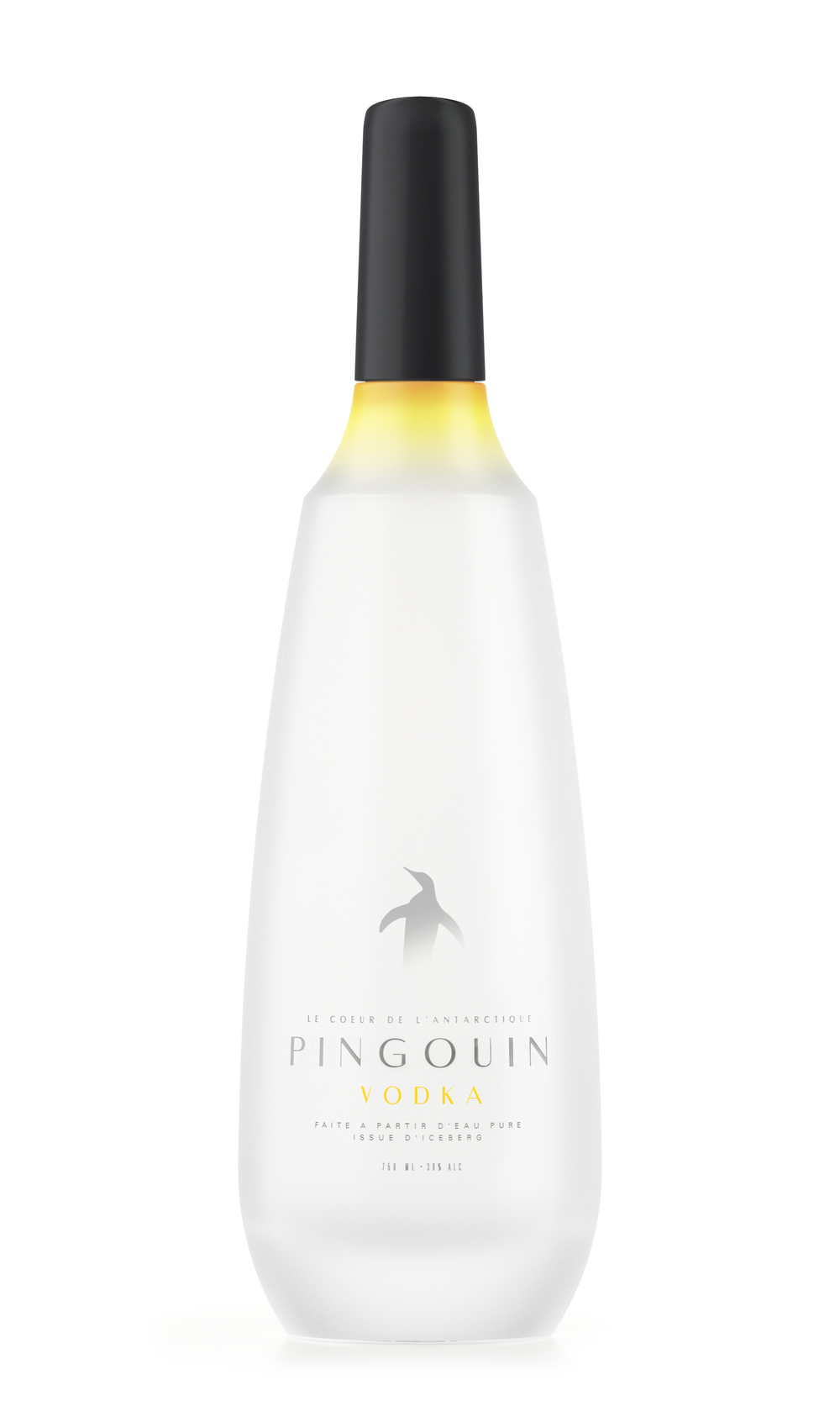 Pinguin_V1.jpg