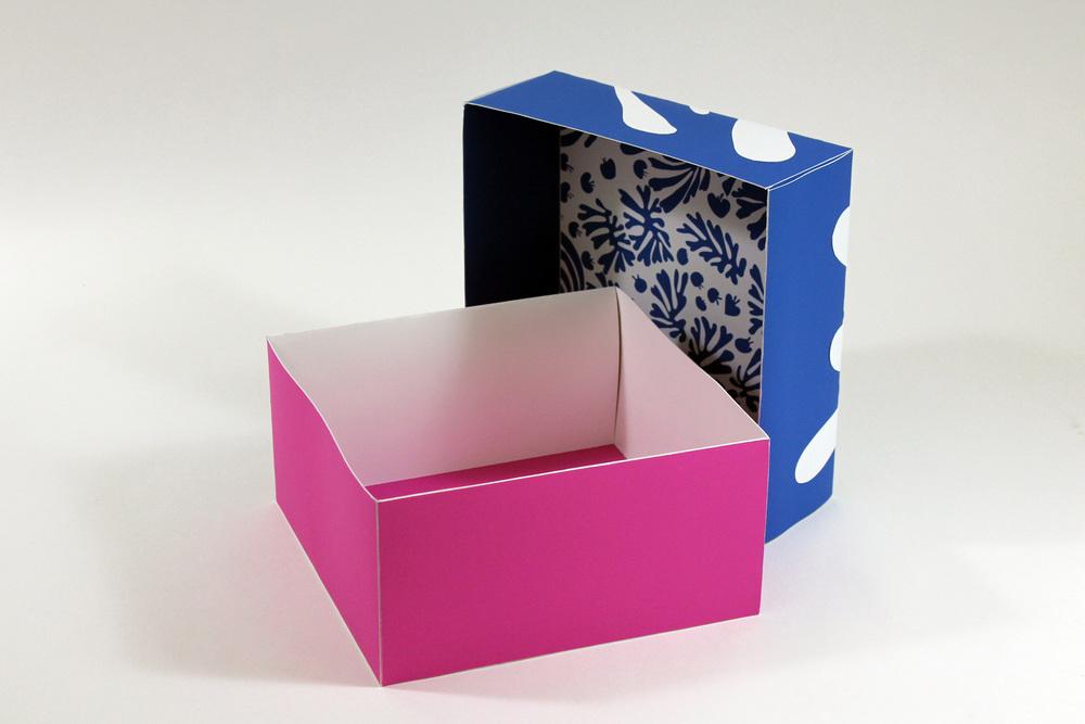 bigbox-lidinterior.JPG