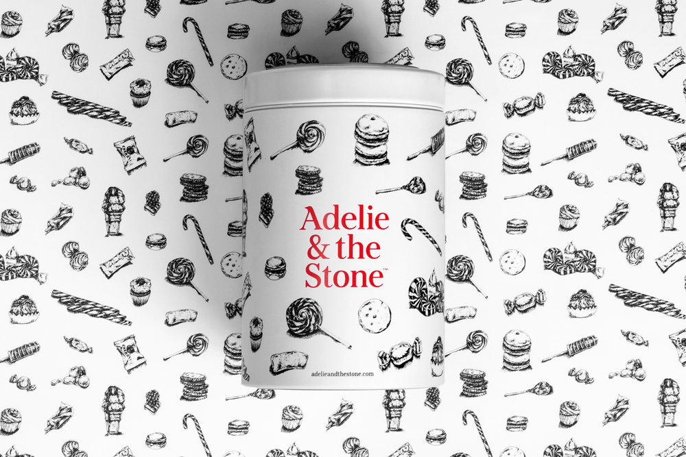 Adelie_and_the_stone_17.jpg
