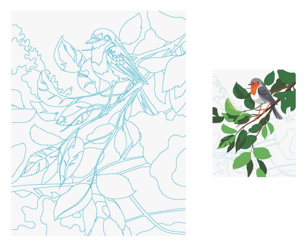 RougeGorge-Sketch-2.jpg