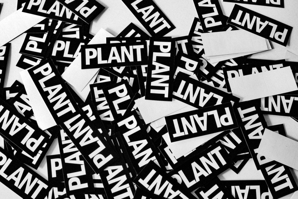 PLANT LOGO STICKERS.jpg
