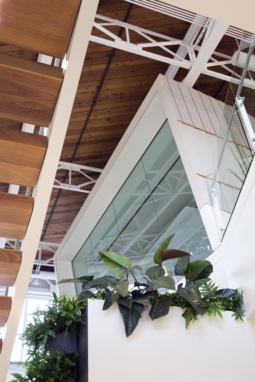 Under Stairs_004.jpg
