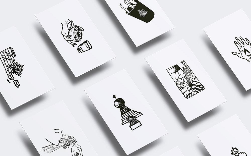 illustrations_01.jpg