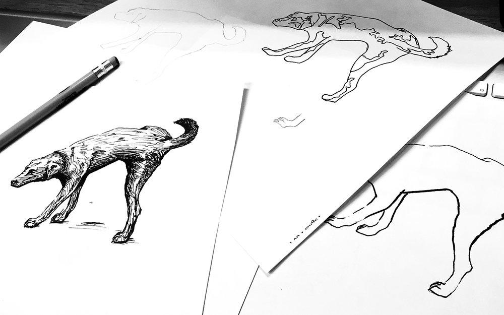 Sketch_-_Perro_Agave.jpg