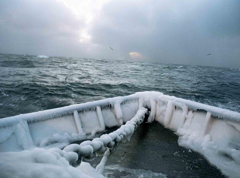 Ocean_Spirit_-_Corey_Arnold_Icy_Bow.jpg