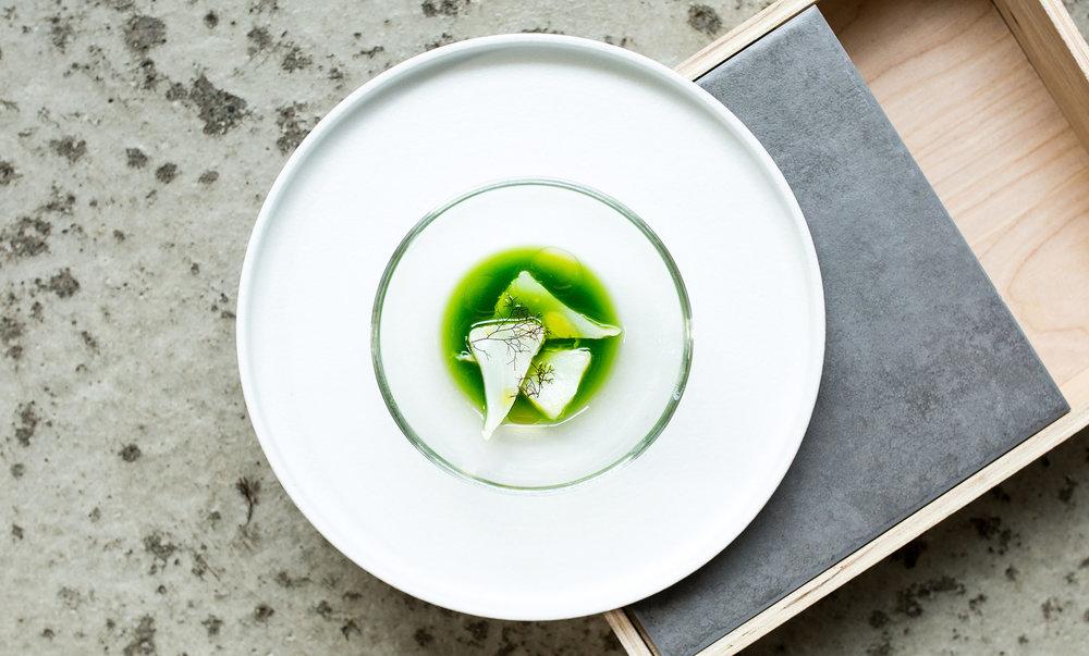 Lofoten-Seaweed-19.jpg
