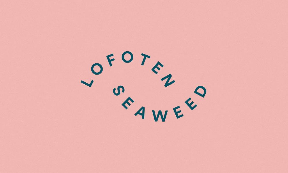 Lofoten-Seaweed-17.jpg