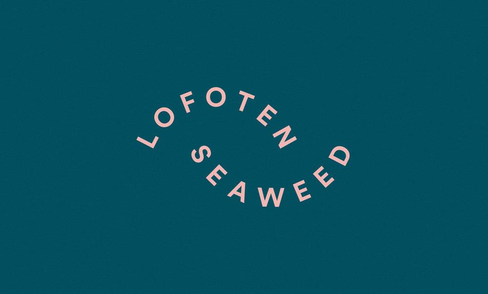 Lofoten-Seaweed-16.jpg
