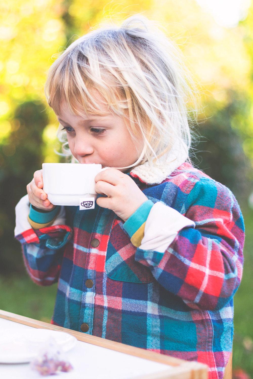 Small_Wild_-_Childrens_Tea_Branding_Packaging_2.jpg