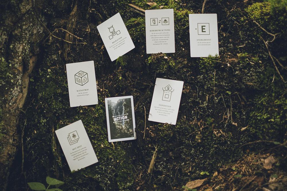 Skogen-6374-crop.jpg