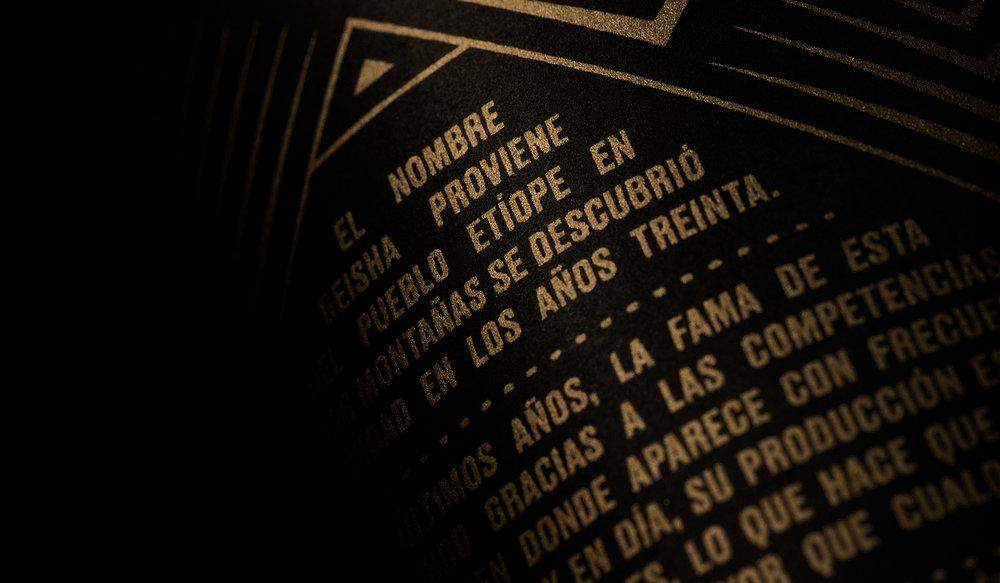 Bocanegra10.jpg