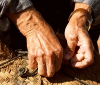 hands arthritis_thumb.jpg