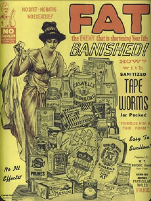 4. Tapeworm Weight Loss Image.jpg