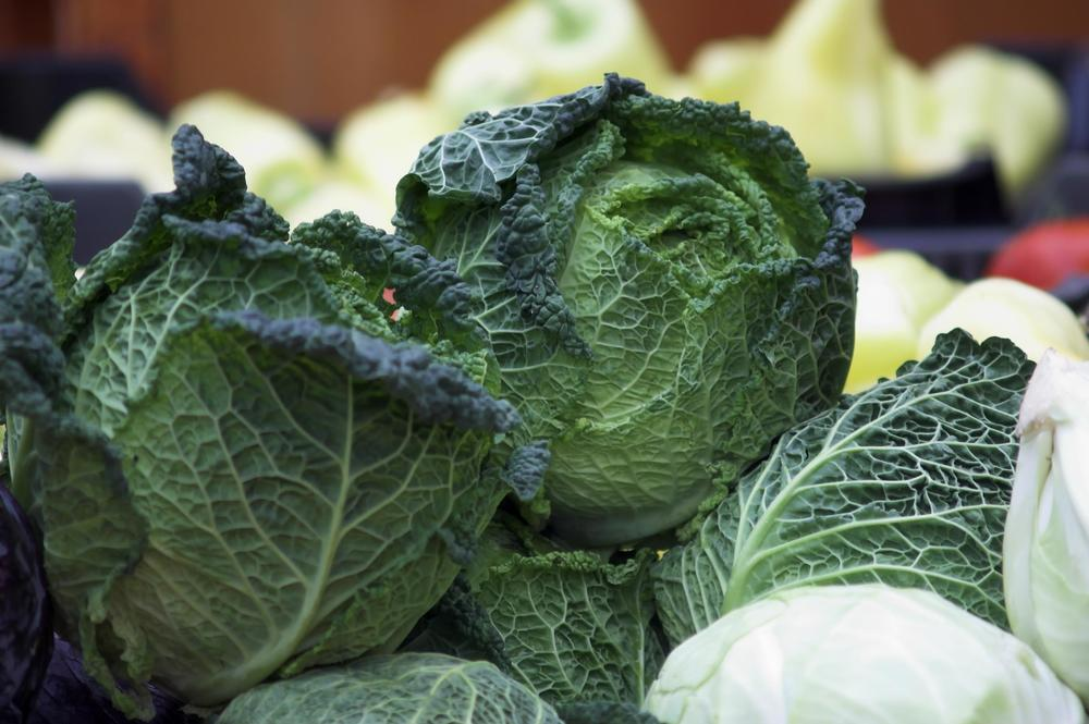 green-vegetables-cabbage-global-health-renegade.jpg