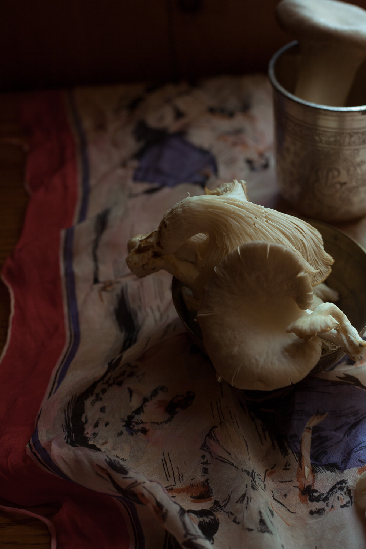 mushroom-3.jpg