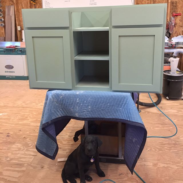 Got our cabinets all assembled with doors and drawers ready to go. Even our little shop mascot decided to jump in there🐶  Stay tuned for finishing pics of the cherry, live-edge slab going on top of these! #reklaimindustriale #dowoodworking #kregjig #kreg #cabinets #cabinet #kitchen #kitchenisland #paint #custom #customfab #smallbusiness #labsofinstagram #buildit #bluecollar #weekend
