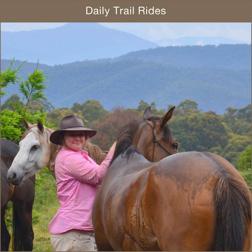Our valley view rides are the perfect way to enjoy the outdoors.