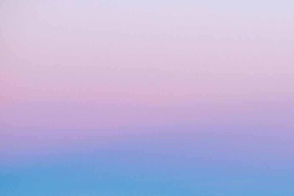 F1__7833.jpg