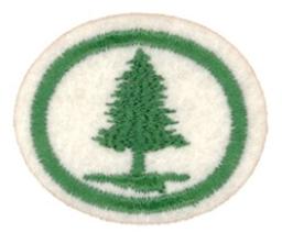 Busker og trær I.PNG