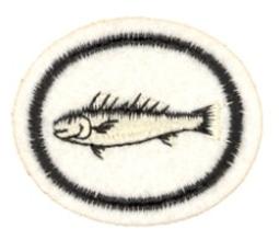 Fisker.PNG