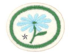 Ville blomsterplanter II.JPG