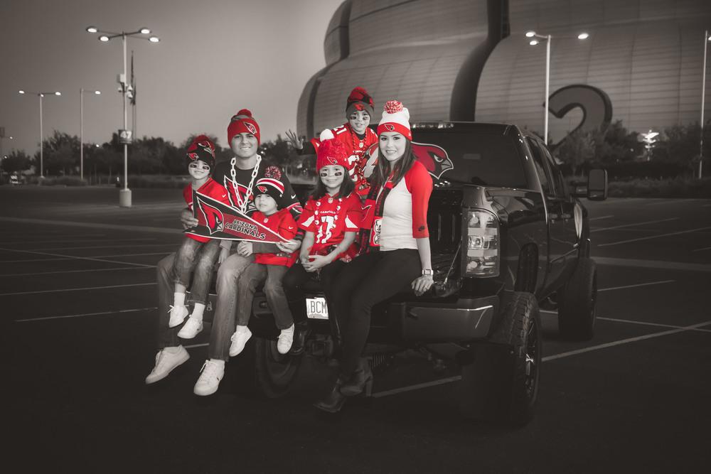 Salas Family Cardinal Stadium-01a.jpg