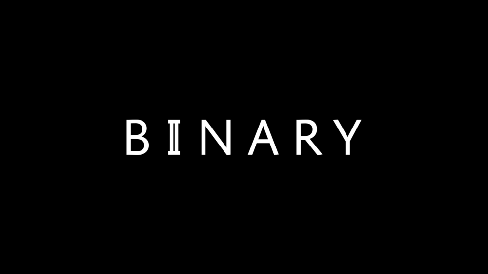 justbenice_binaryapparel_logotype_02.png