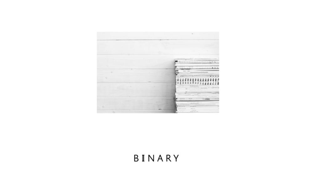 justbenice_binaryapparel_logotype_04.png