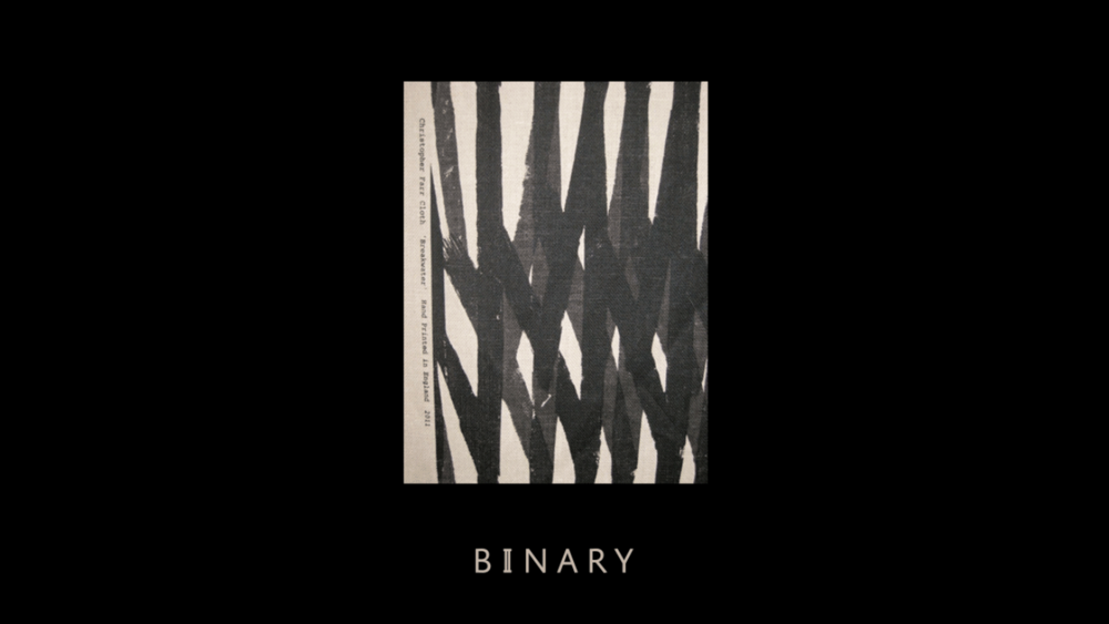 justbenice_binaryapparel_logotype_05.png