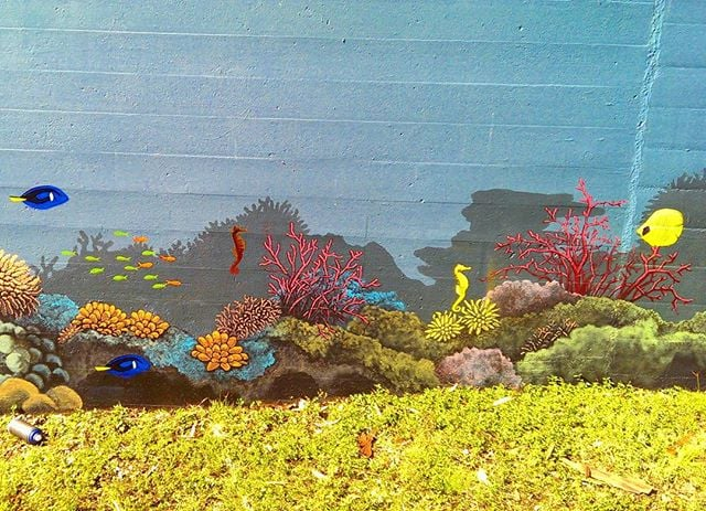 Added some #fish on this #mural in #brisbane today.