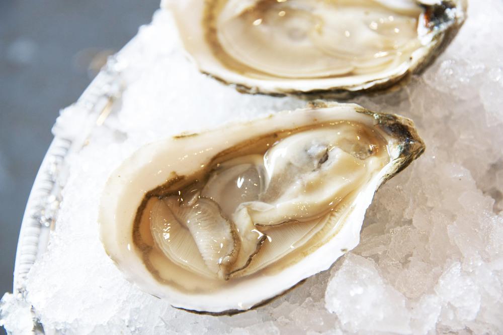 Pangea Shellfish Osterville Oyster 2.jpg