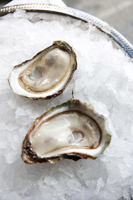 Summerside Oysters 2.jpg