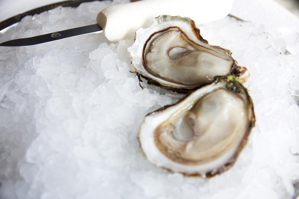 Summerside Oysters.jpg