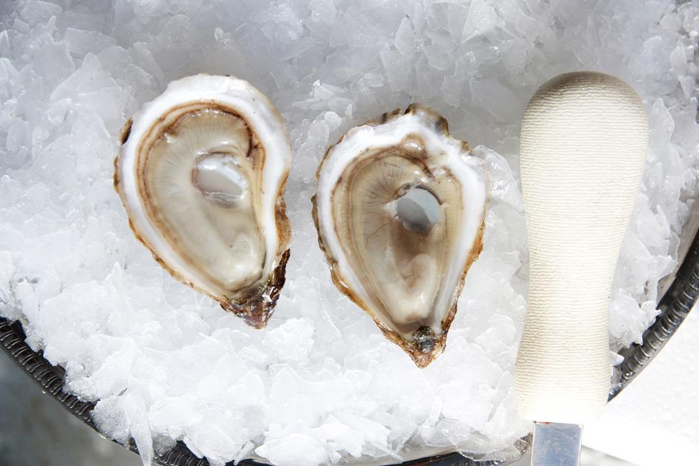 Pangea Shellfish Saint Simon Oyster 2.jpg