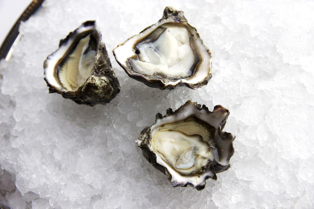 Pangea Shellfish Kumamoto Oyster Open 4.jpg